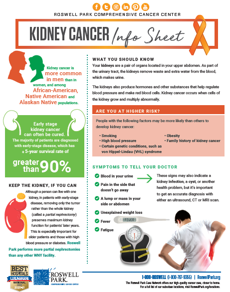What Is Kidney Cancer Roswell Park Comprehensive Cancer Center