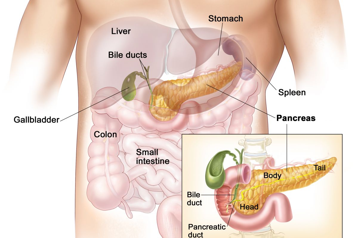 How to cure pancreatic cancer with traditional medicine