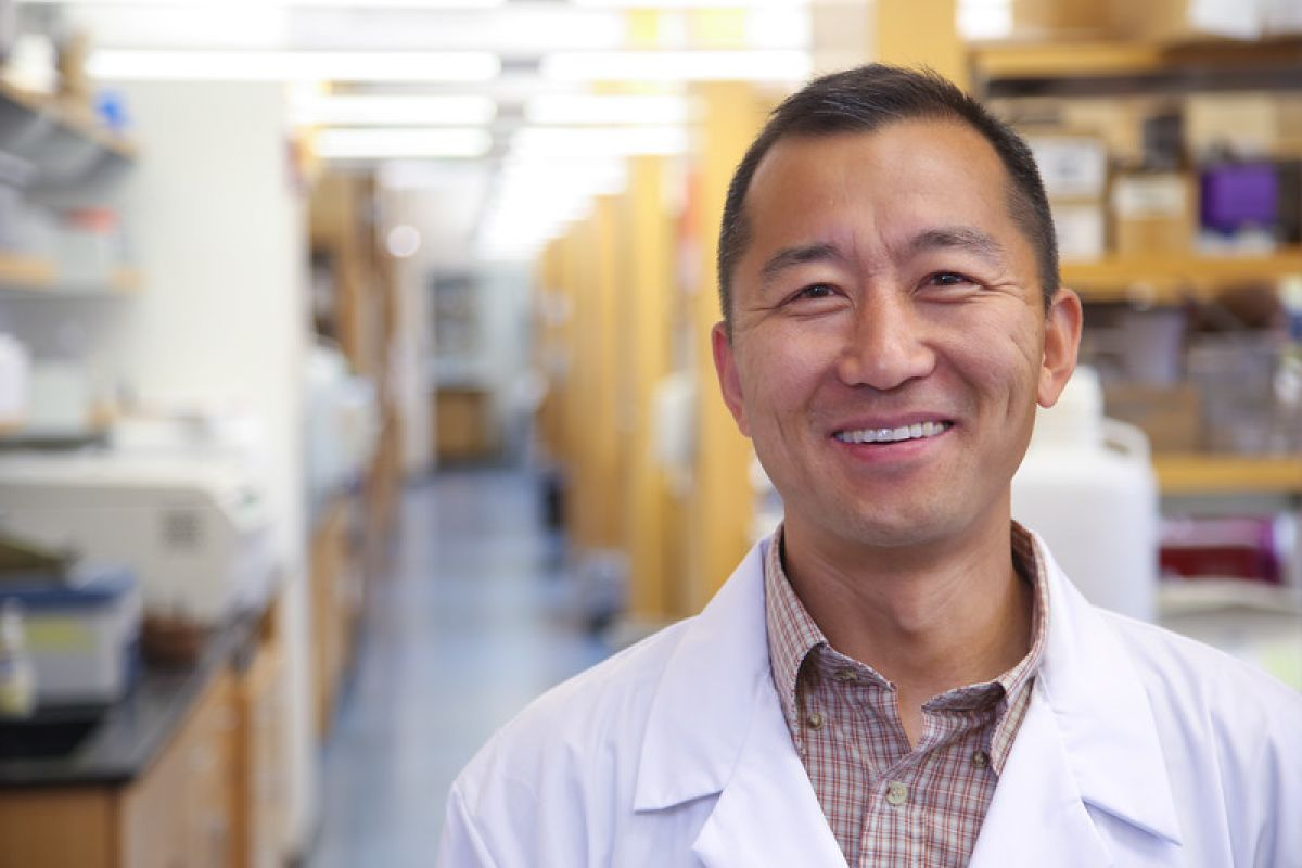 Xuefang Cao, MD, PhD, is leading promising research that may bring better outcomes for blood or marrow transplant patients.