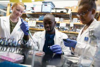 Summer Student Research Programs at Roswell Park